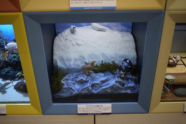 海洋堂フィギュアミュージアム黒壁の写真0347
