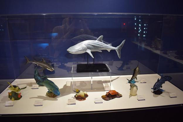 海洋堂フィギュアミュージアム黒壁の写真0350
