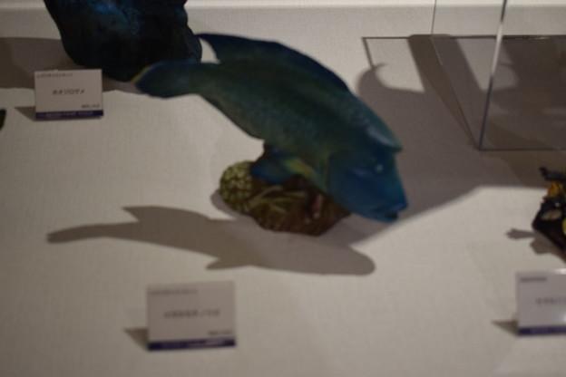 海洋堂フィギュアミュージアム黒壁の写真0352