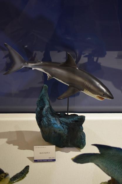海洋堂フィギュアミュージアム黒壁の写真0353