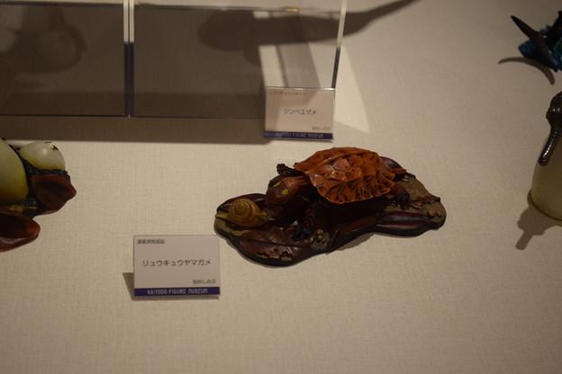 海洋堂フィギュアミュージアム黒壁の写真0355