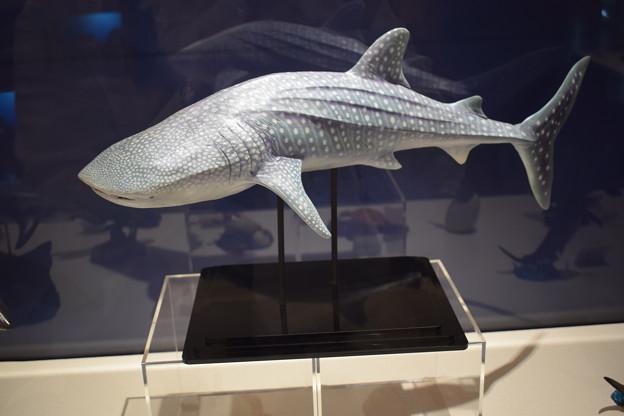 海洋堂フィギュアミュージアム黒壁の写真0358