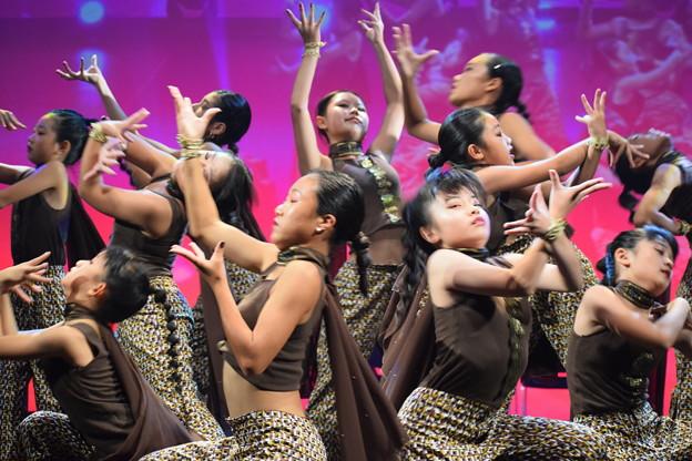 Photos: 第8回北神戸コレクション(Dance&VocalShowChikaNumber)0029