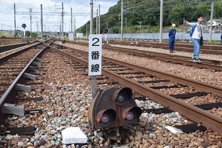 神鉄トレインフェスティバル(2019)0038