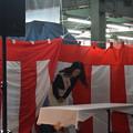 Photos: 神鉄トレインフェスティバル(2019)0134