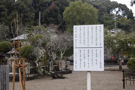 粉河寺の写真0035