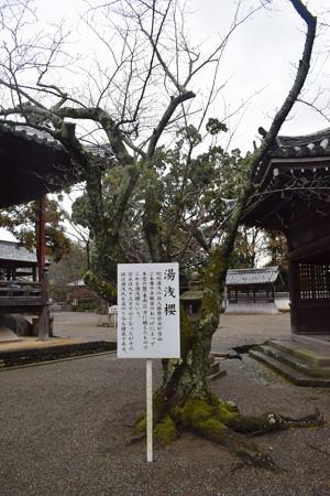 粉河寺の写真0055