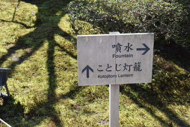 金沢城・兼六園の写真0046