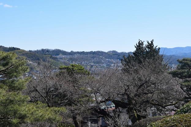 金沢城・兼六園の写真0050