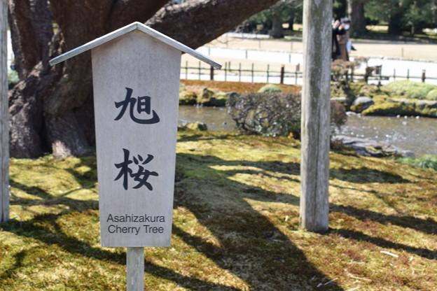 金沢城・兼六園の写真0056