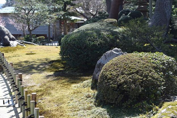 金沢城・兼六園の写真0061