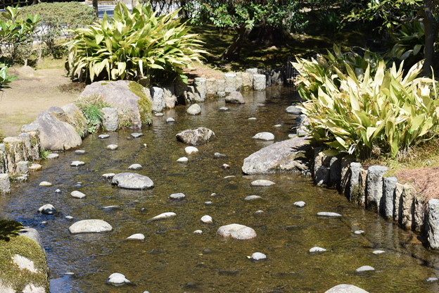 金沢城・兼六園の写真0093