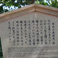 金沢城・兼六園の写真0146