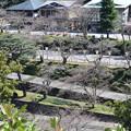 金沢城・兼六園の写真0151