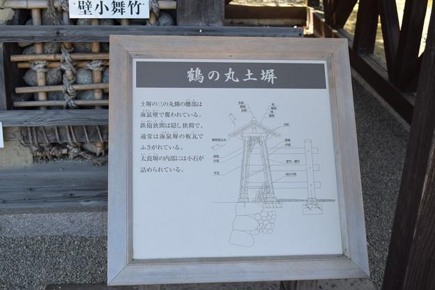 金沢城・兼六園の写真0152