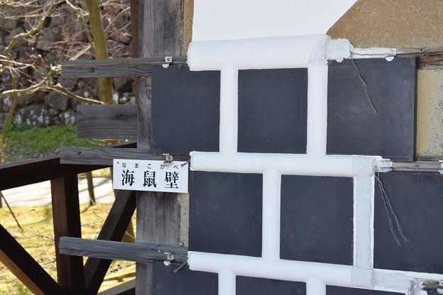 金沢城・兼六園の写真0156