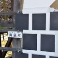 Photos: 金沢城・兼六園の写真0156