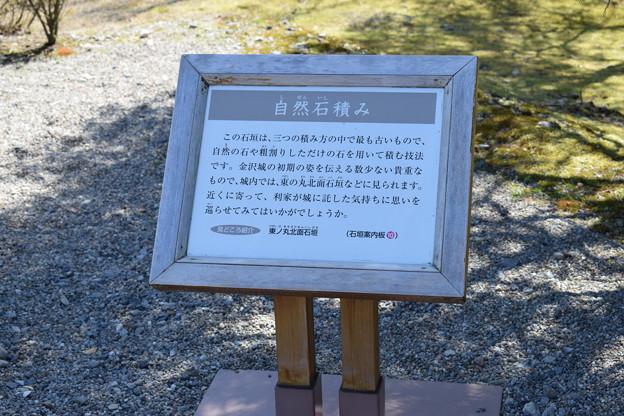 Photos: 金沢城・兼六園の写真0158
