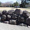 金沢城・兼六園の写真0159