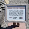 Photos: 金沢城・兼六園の写真0160