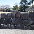 Photos: 金沢城・兼六園の写真0161