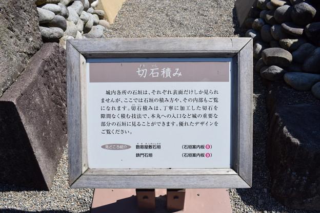 金沢城・兼六園の写真0162
