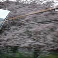 Photos: ひのとりの車窓0008