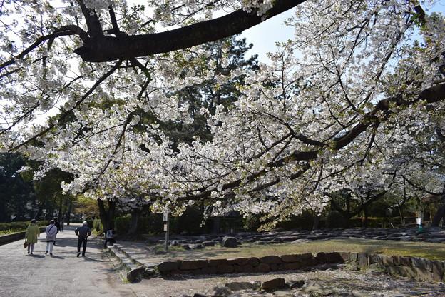 名古屋市内の写真0073