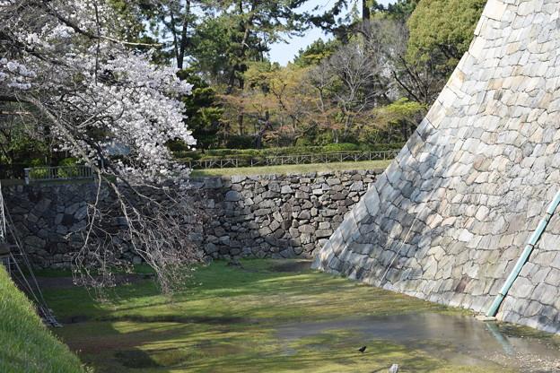 名古屋市内の写真0078