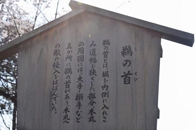 名古屋市内の写真0079
