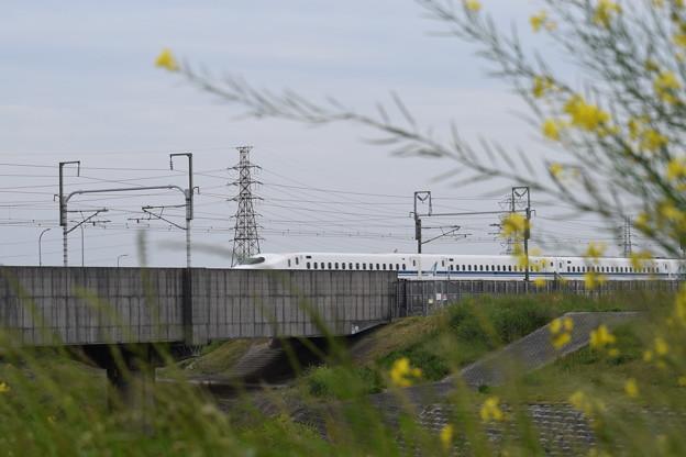東海道新幹線の写真0009