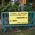 Photos: 石清水八幡宮の写真0001