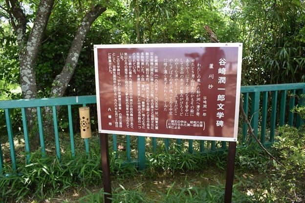 石清水八幡宮の写真0024