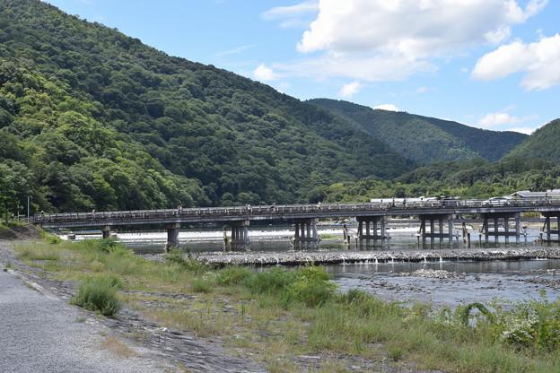 嵐山の写真0005