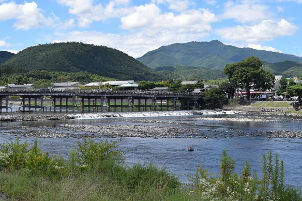 嵐山の写真0006