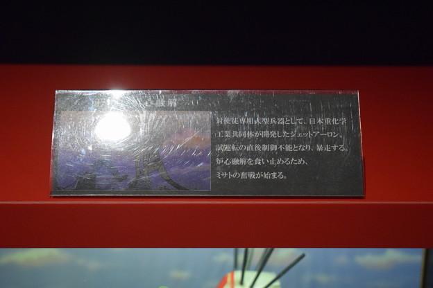 海洋堂フィギュアミュージアム黒壁の写真0429