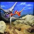 Photos: 海洋堂フィギュアミュージアム黒壁の写真0431