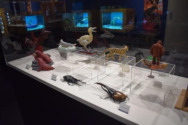 海洋堂フィギュアミュージアム黒壁の写真0639