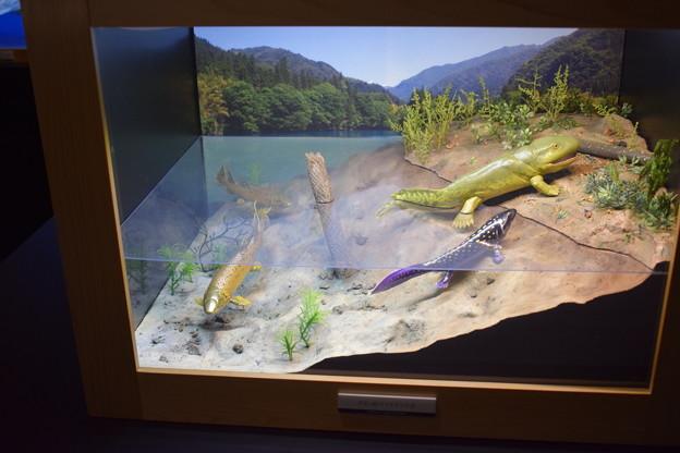 海洋堂フィギュアミュージアム黒壁の写真0642