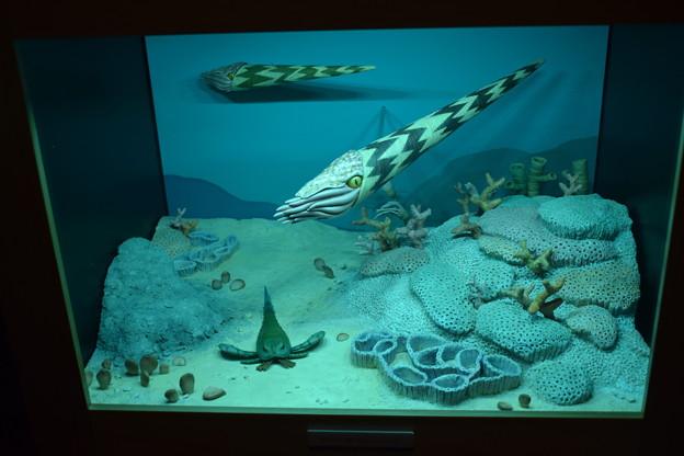 海洋堂フィギュアミュージアム黒壁の写真0643