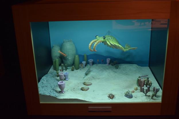 海洋堂フィギュアミュージアム黒壁の写真0644