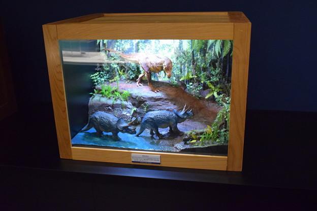 海洋堂フィギュアミュージアム黒壁の写真0652