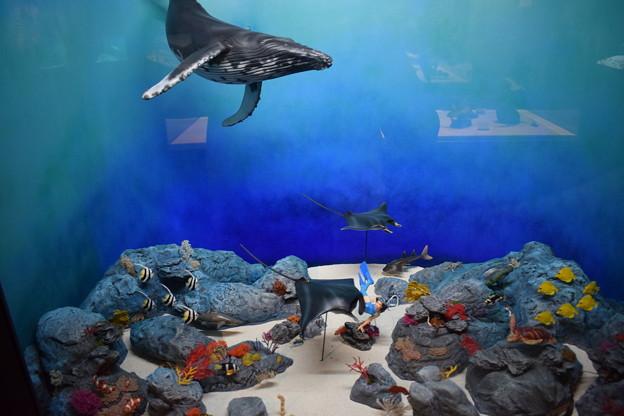 海洋堂フィギュアミュージアム黒壁の写真0657