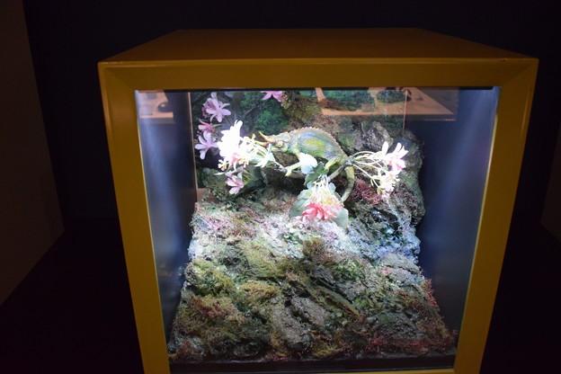 海洋堂フィギュアミュージアム黒壁の写真0640
