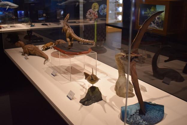 海洋堂フィギュアミュージアム黒壁の写真0648