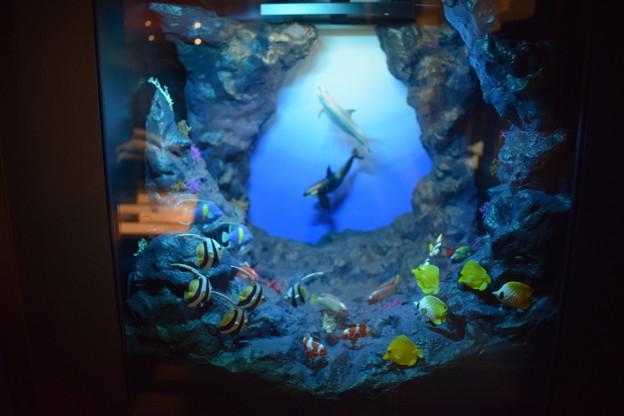 海洋堂フィギュアミュージアム黒壁の写真0658