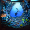 Photos: 海洋堂フィギュアミュージアム黒壁の写真0658