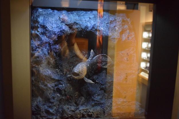 海洋堂フィギュアミュージアム黒壁の写真0661