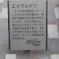 Photos: 敦賀市内の写真0246