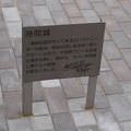 Photos: 敦賀市内の写真0250